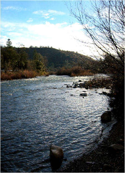 Freeport Element of the American River Use Strategy